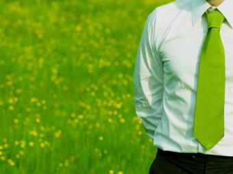 green-professional-job