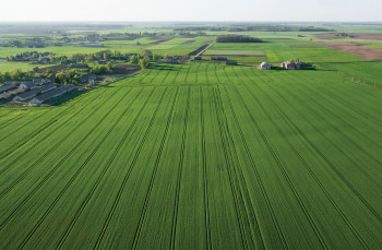 Agriculture-Sector-UA