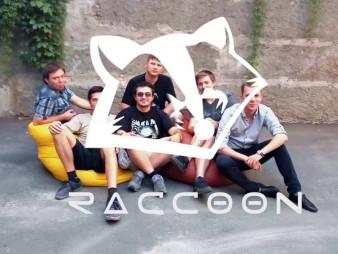Raccoon.Recovery