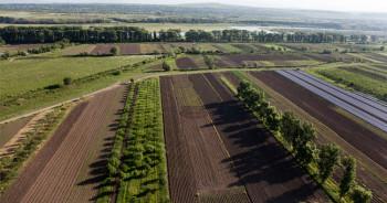 agr-land-law