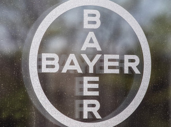Bayer_Window
