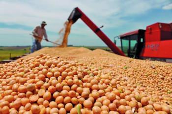 Mato Grosso gera mais de 10 mil postos de trabalho