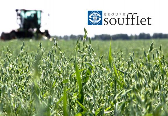 Soufflet Agro