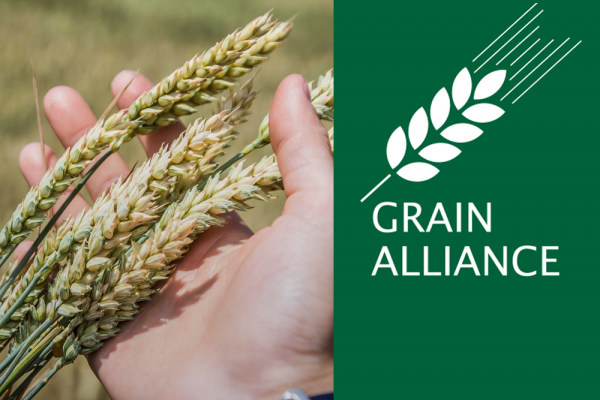 Grain Alliance