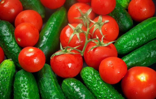 pomidory-ogurtsy-ovoshchi-urozhai