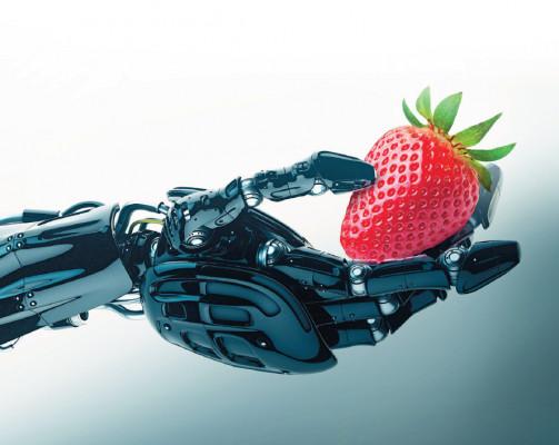 agro-robots