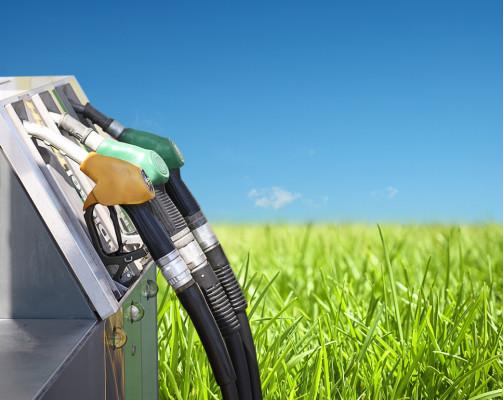 biofuel-ua
