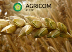 Cyprus Armpitch Holdings to buy blocking stake of domestic Agricom Group