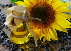 Sunflower oil producer ViOil attracts USD 80mln syndicated loan from European banks