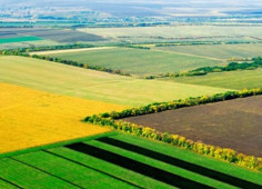 Ukrainian agtech startup Agri Eye with global goals raised $150,000