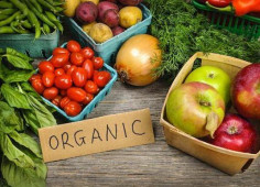 Investors from Denmark to invest in organic farming in Ukraine