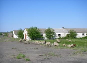 комплекс в Николаевской области (1)
