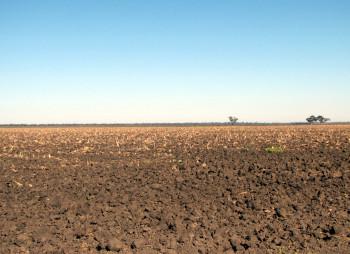 agriculture-land-priluki