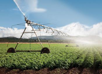irrigation-zapor