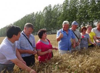 china-agriculture-ua