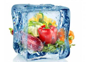 frozen-company