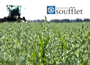 EBRD could issue EUR35 mln loan to France's Soufflet for work in Ukraine
