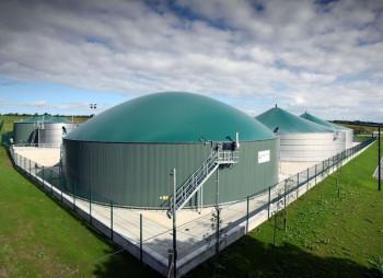 Крупнейший сахарный завод Западной Украины инвестирует 290 млн. грн. в биогазовый комплекс
