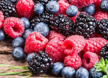 Berries-2019