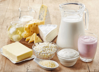 Агрофирма Приволье построит на Луганщине завод по переработке молока