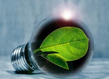 GEF и ЕБРР предоставят $55,8 млн. на развитие биоэнергетики в Украине