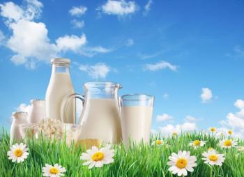 Производитель молочки ТМ Пирятин и ТМ Яготинское вложит $15 млн. в новые продукты