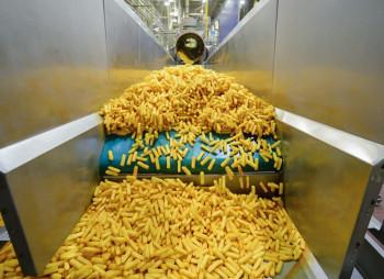 Potato Agro запустит в Украине завод по производству картофеля фри