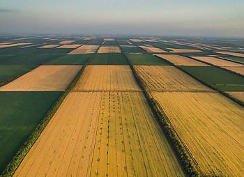 Эпицентр готовится к выкупу арендованных земель