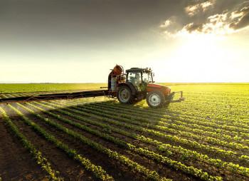 agriculture-nikolaev