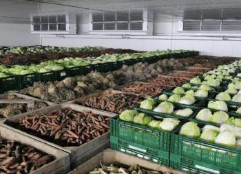 На Кировоградщине строят овощехранилище и производство соков за 20 млн. грн