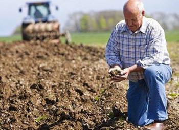 В Украине создадут Фонд частичного гарантирования кредитов для аграриев