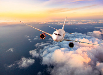 В Украине зарегистрирована новая авиакомпания Bees Airline