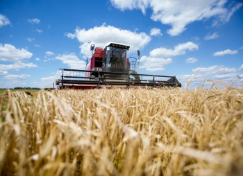 Grain Alliance привлекает €7 млн. от ЕБРР