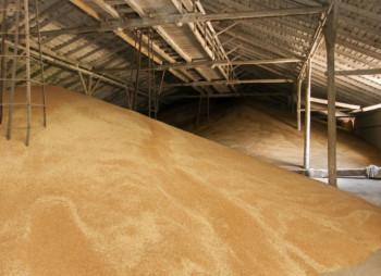 Glencore продает зернохранилище в Харьковской области