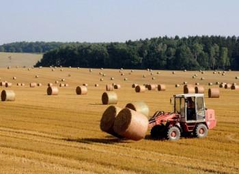 prodam-agropredpriyatie-v-kievskoi-oblasti-photo-2900