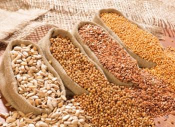 Производитель семян KWS SAAT получил кредит от ЕИБ на €200 млн