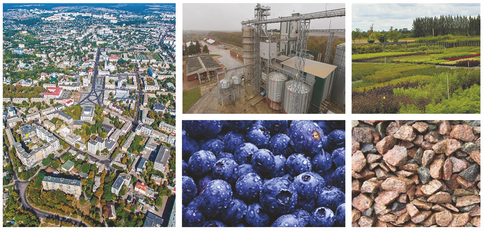 Private clinics Zhytomyr region: a selection of sites