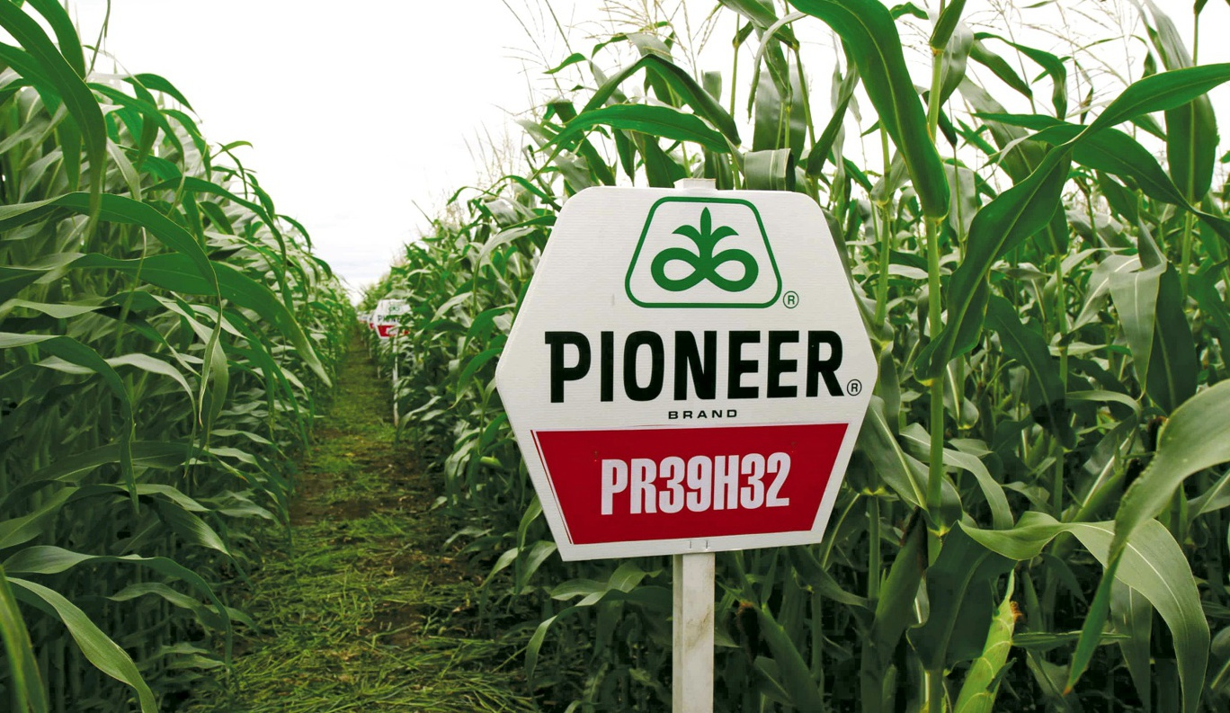 DuPont Pioneer - Fields